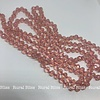 Must Have Big Beaded Long Necklace Blush