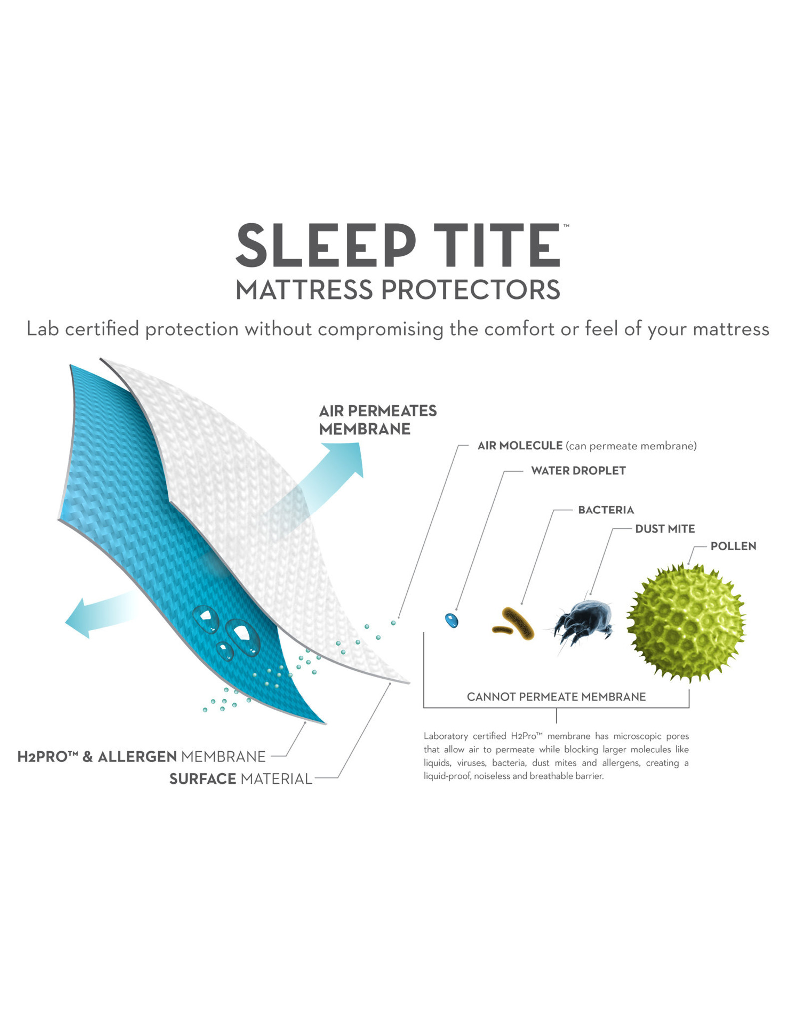 Sleep Tite SL00QQMP Queen Terry Protector