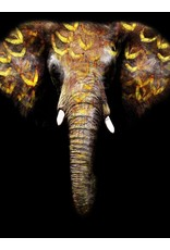 "SF1228 Elephant Gold Trunk 60"" x 40"""