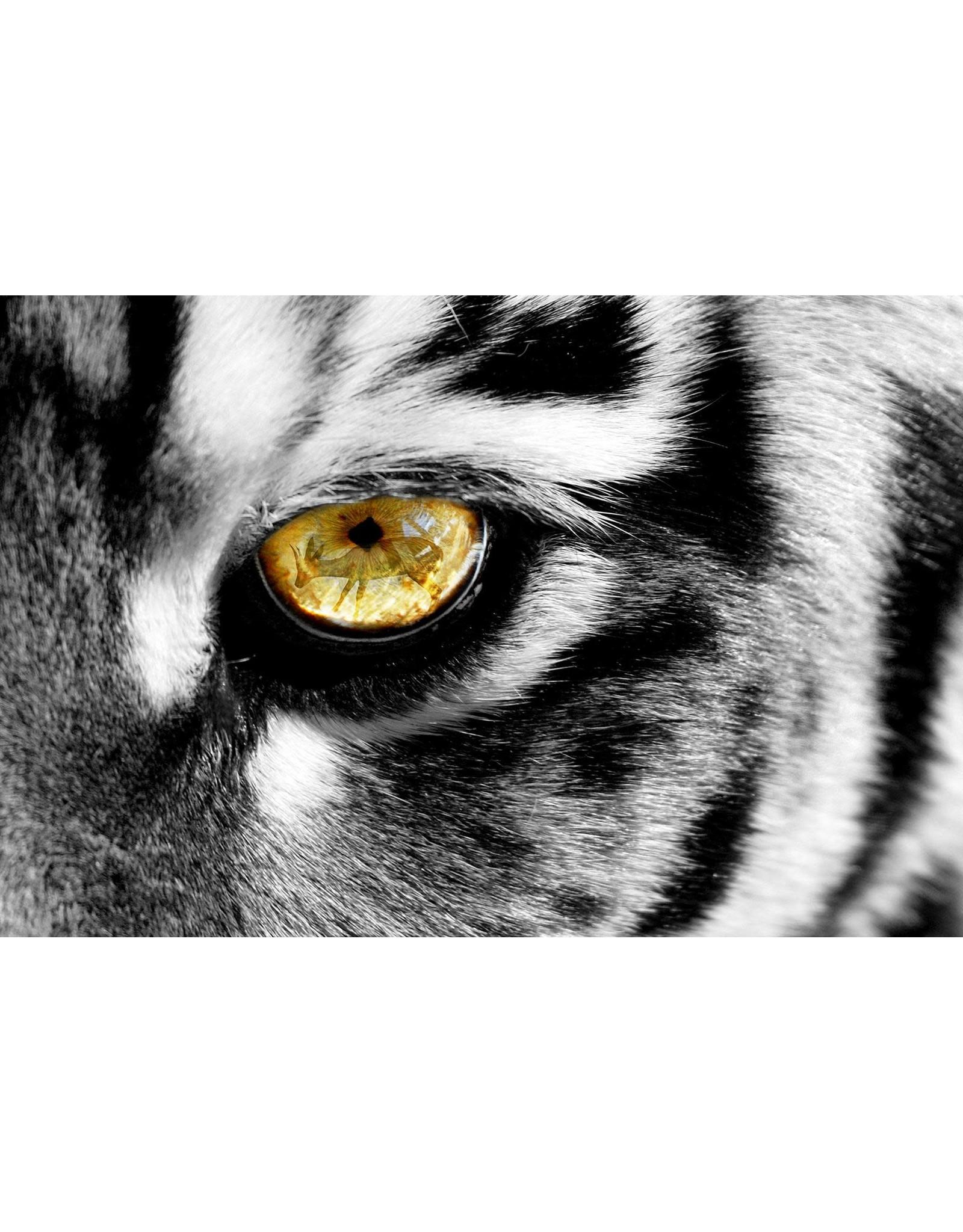 """SF1387 Eye of Tiger 60"""" x 40"""""""