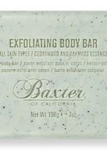 Exfoliating Body Bar