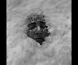 Self Snow