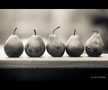 5 Pears