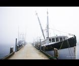 Fishing Wharf