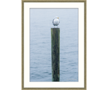 Gull Post