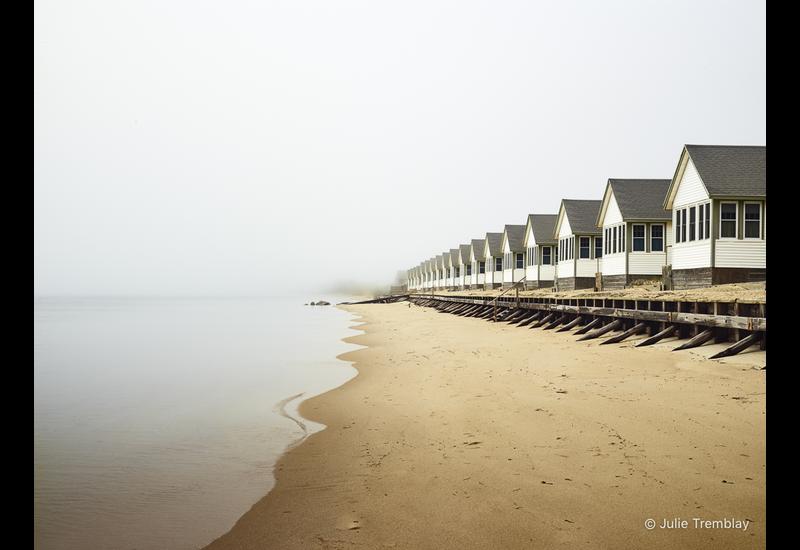 Day's Fog