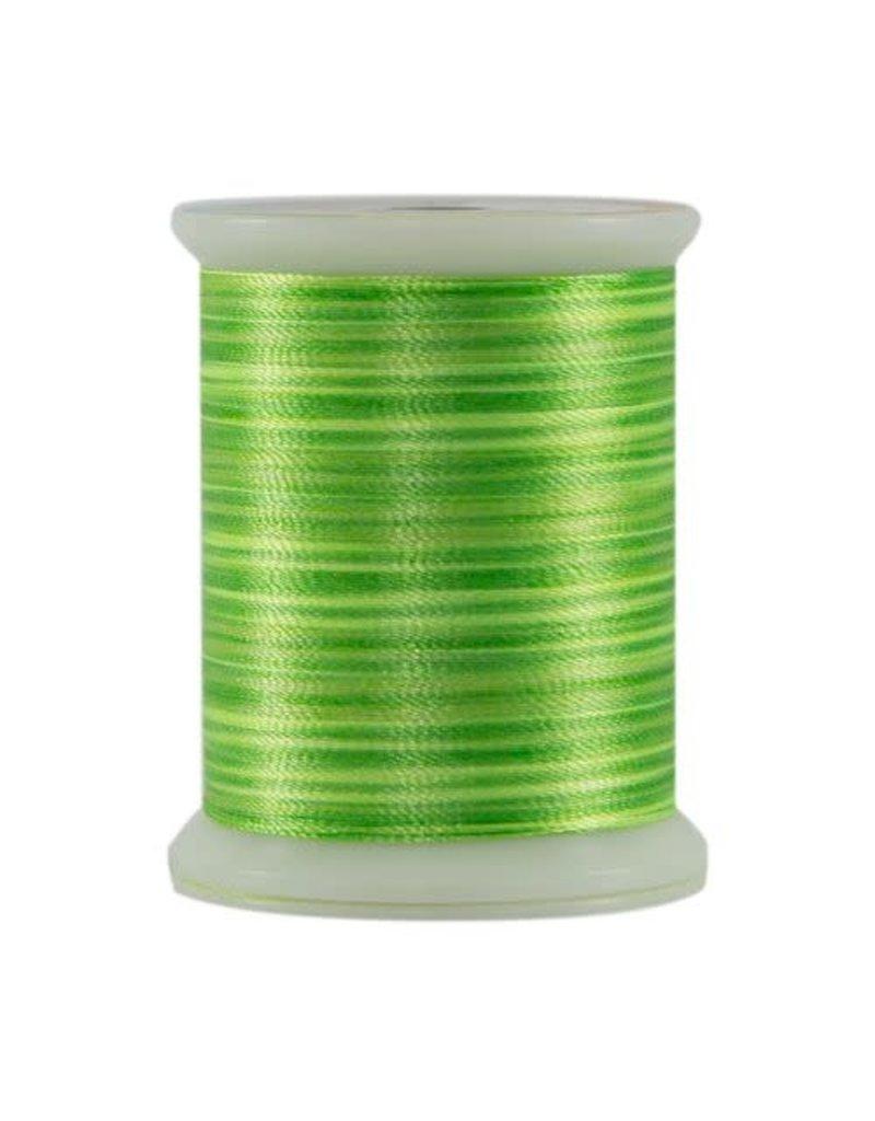 Fantastico Superior Fantastico threads 5113 500 YDS