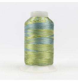 Accent WonderFil Accent multicolors threads  ACM01 400m