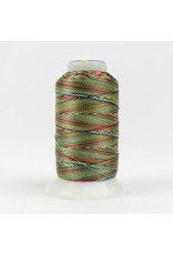 Accent WonderFil Accent multicolors threads  ACM24 400m