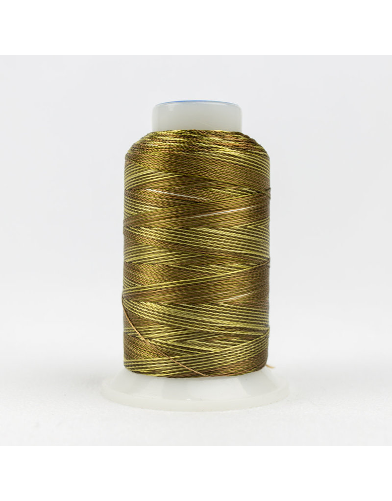 Accent WonderFil Accent multicolors threads ACM06 400m