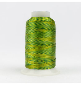Accent WonderFil Accent multicolors threads ACM16 400m