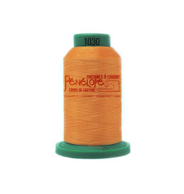 Isacord Isacord sewing and embroidery thread 1030