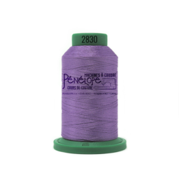 Isacord Fil Isacord 2830 pour couture et broderie