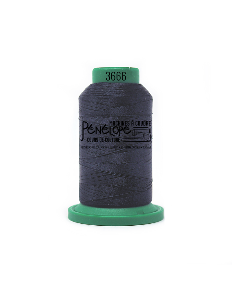 Isacord Isacord sewing and embroidery thread 3666