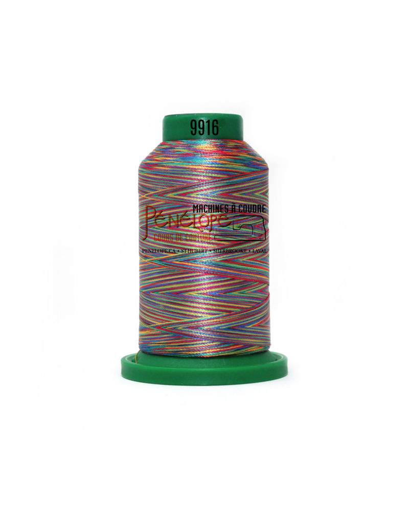 Isacord Fils Isacord multicouleur couture et broderie