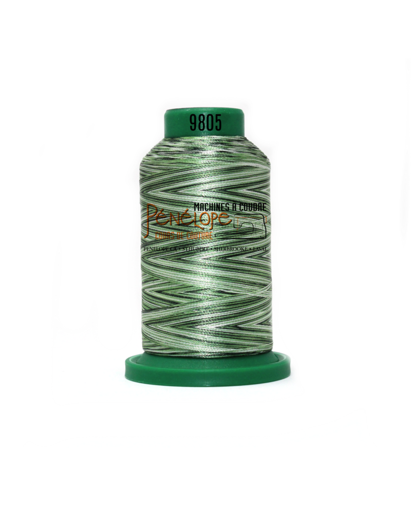 Isacord Fils Isacord multicouleur couture et broderie 9805 1000 m