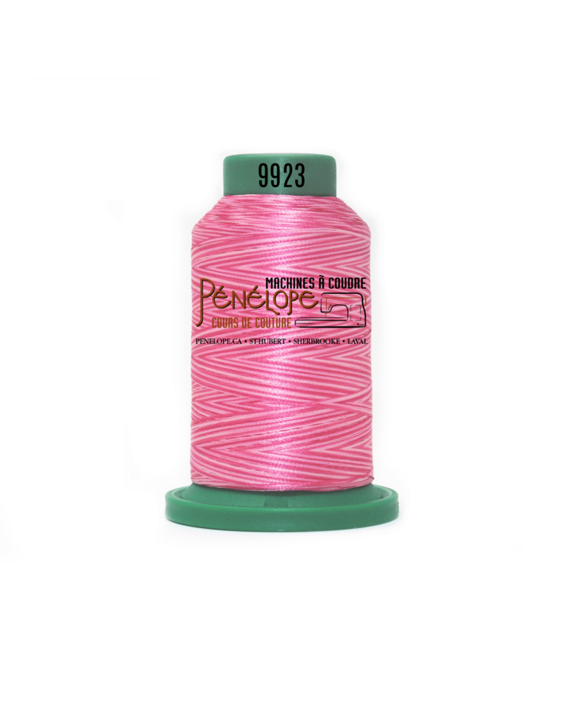 Isacord Fils Isacord multicouleur couture et broderie 9923 1000 m