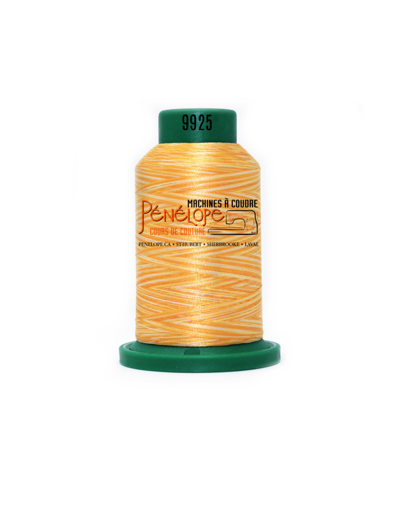 Isacord Fils Isacord multicouleur couture et broderie 9925 1000 m