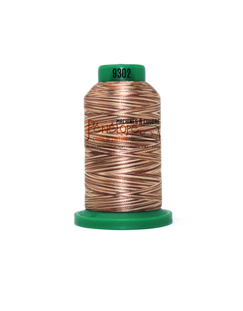 Isacord Fils Isacord multicouleur couture et broderie 9302 1000 m