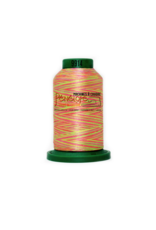 Isacord Fil Isacord multi-couleur 9914 1000 m pour broderie et couture