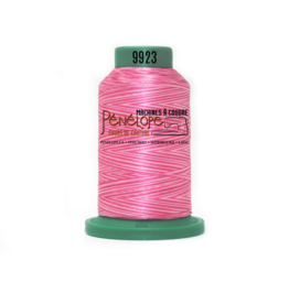 Isacord Fil Isacord multi-couleur 9923 1000 m pour broderie et couture
