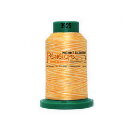 Isacord Isacord multicolor thread 9925 1000 m for embroidery and sewing