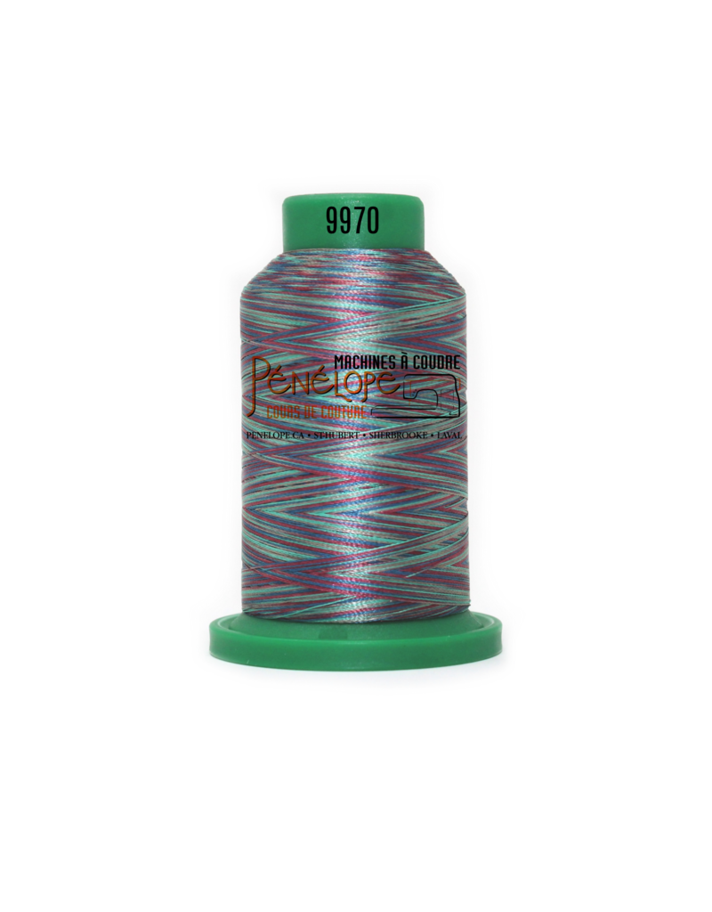 Isacord Fils Isacord multicouleur couture et broderie 9970 1000 m