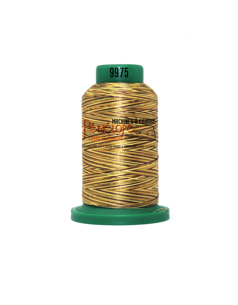 Isacord Fils Isacord multicouleur couture et broderie 9975 1000 m