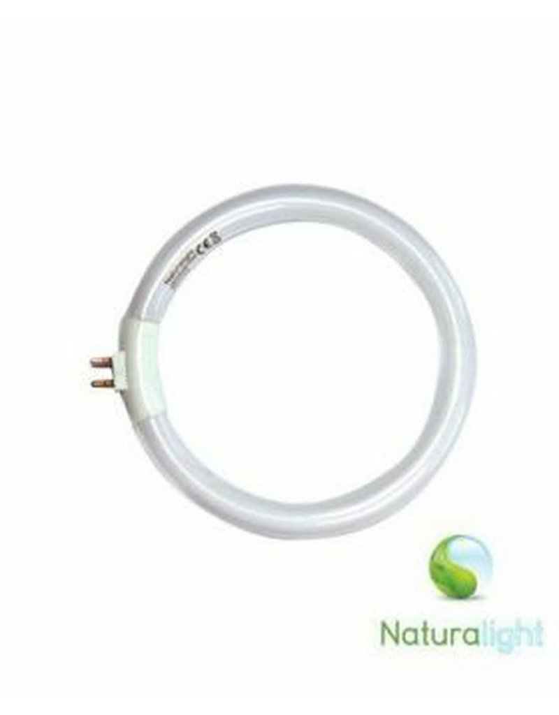 Day Light 12 Watt Circular Tube for N1040