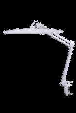 Day Light LED Task Lamp