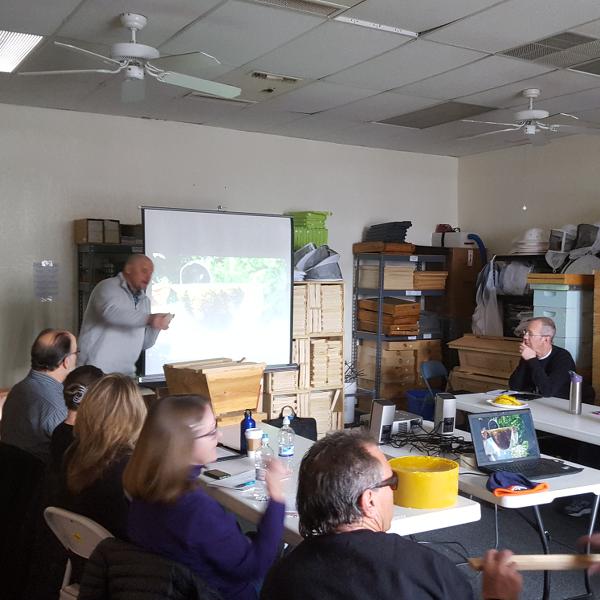 Intermediate Beekeeping Intermediate Beekeeping Class - Sun Feb 23