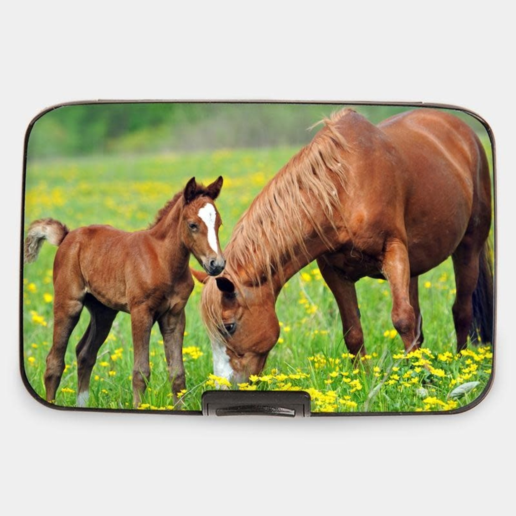 Monarque Armored Wallet - Bay With Foal