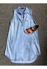Papillon Collared Shirt Hem Dress