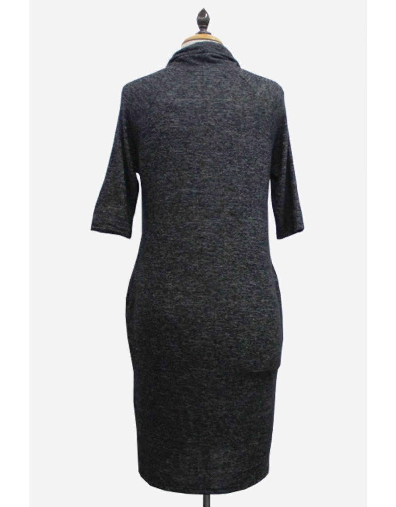 Coin1804 Cozy Cowl Neck Dress w Pkts