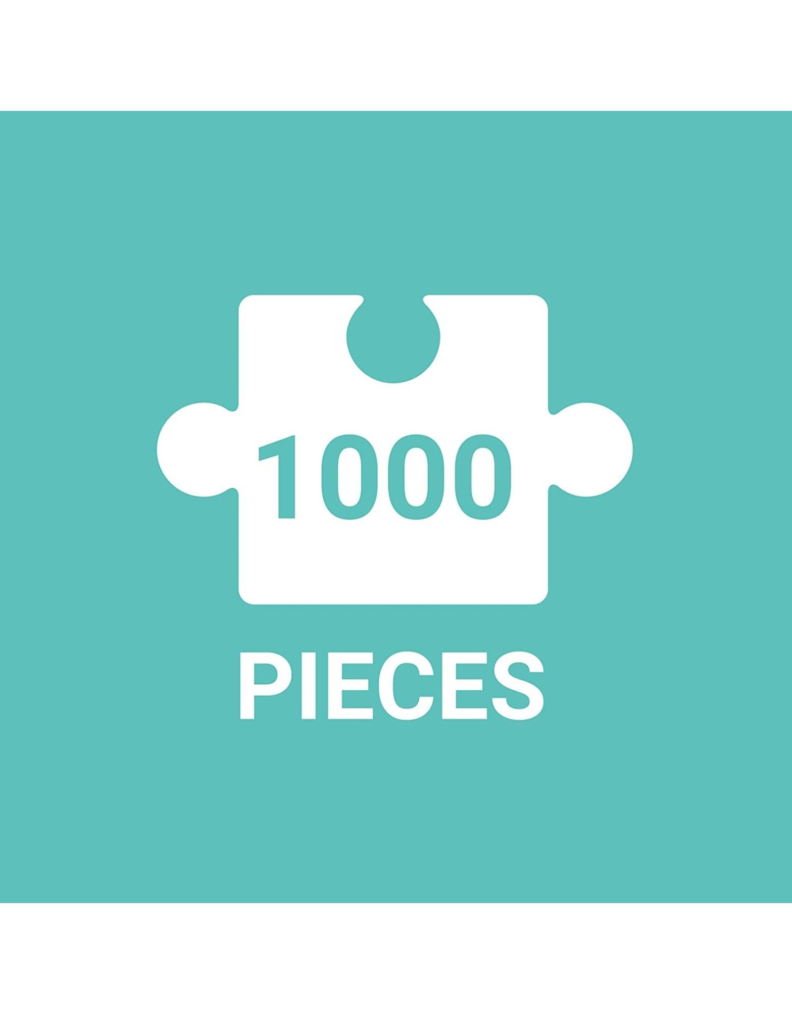 Galison 1000 Piece Jigsaw Puzzle, Multicolor