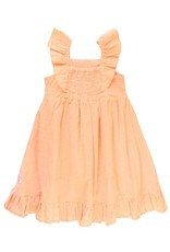 RuffleButts Salmon Swiss Dot Flutter Dress