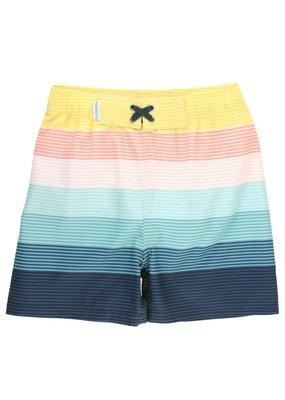 Island Stripe Swim Trunk