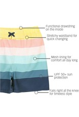 Island Stripe Swim Trunk