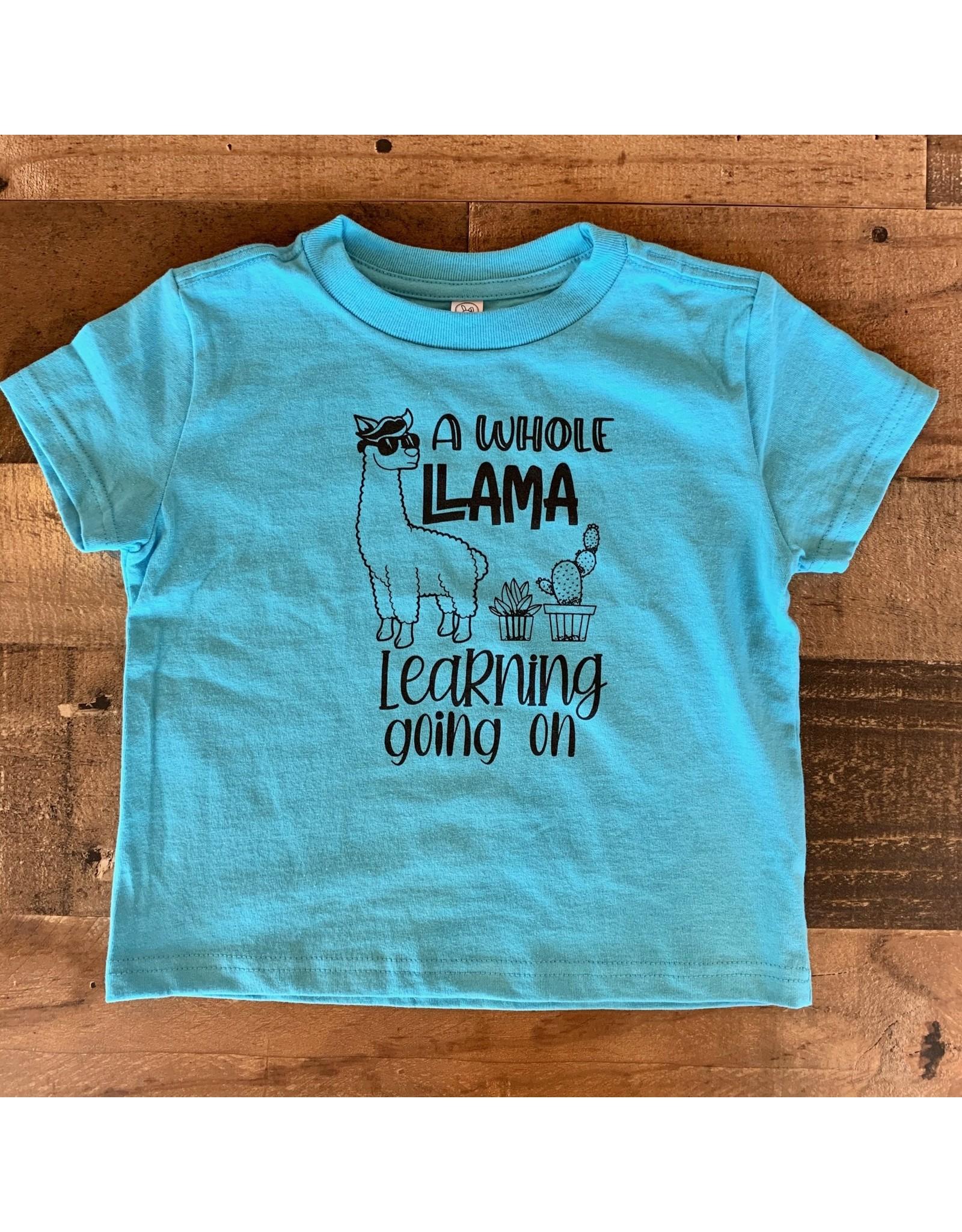 Llama Learning TShirt: Turquoise