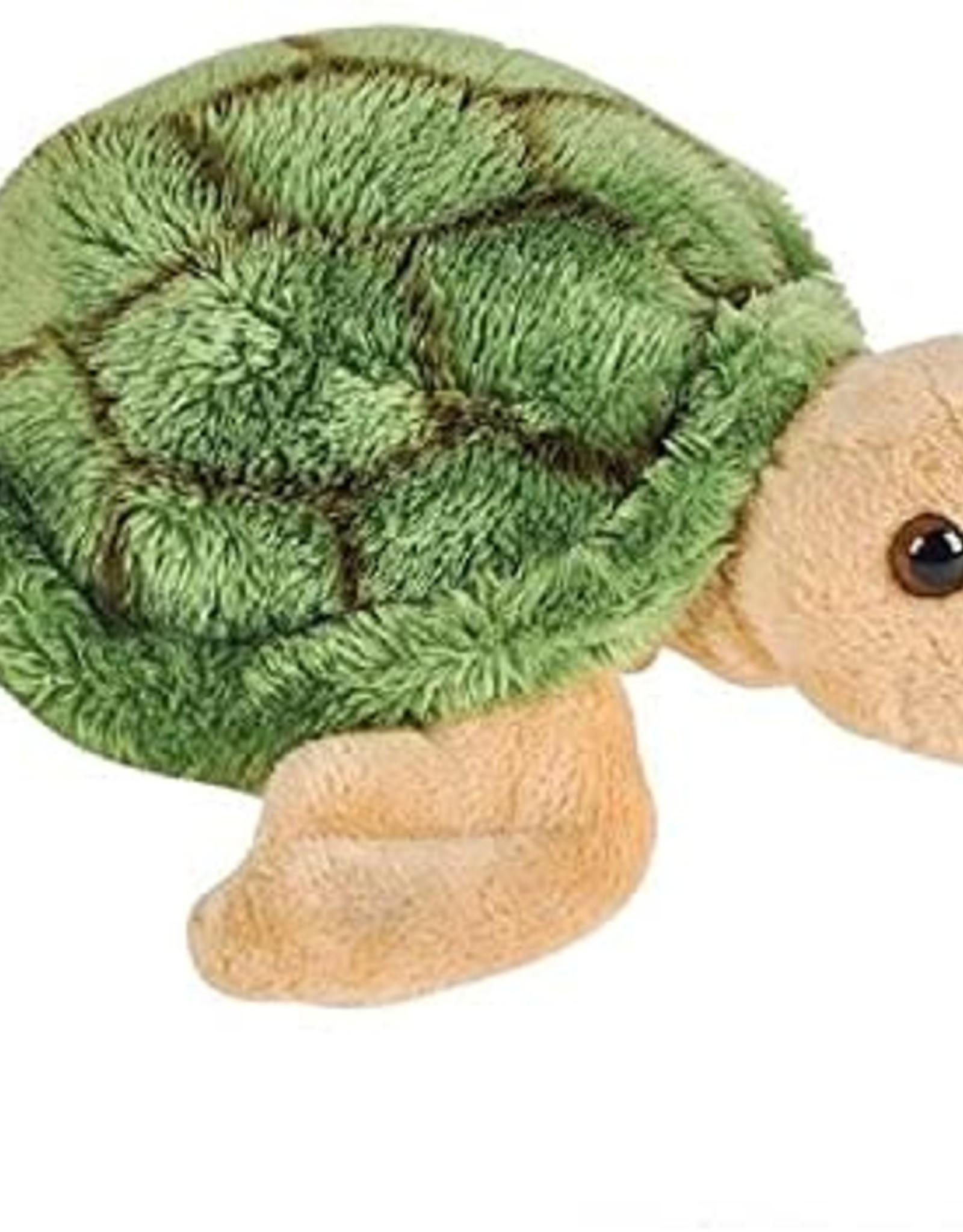 Small World Turtle
