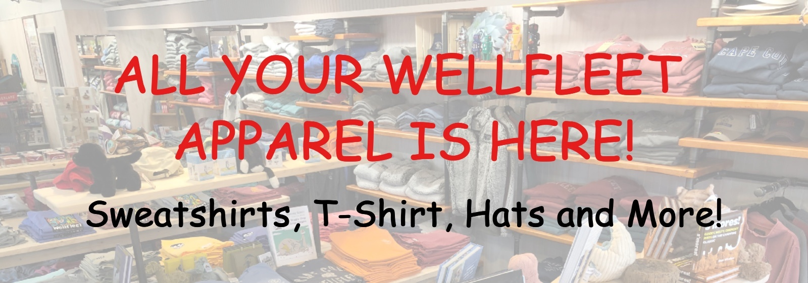 Apparel with Store Background