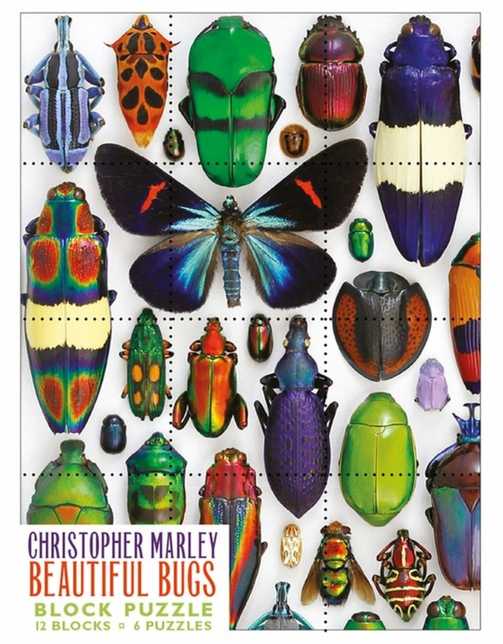 Pomegranite Puzzles - Christopher Marley: Beautiful Bugs Block