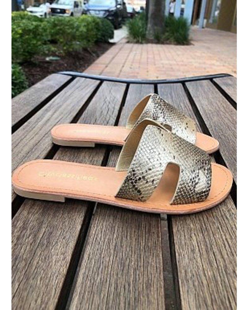 Python Slide Sandal