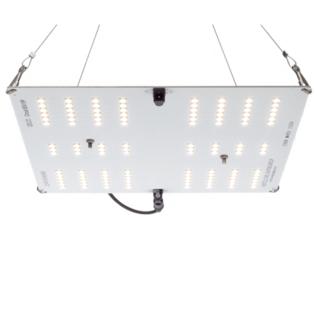 Horticulture Lighting Group HLG-65 V2