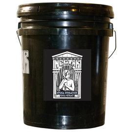 Nectar For The Gods Hygeia Hydration 5 Gallon