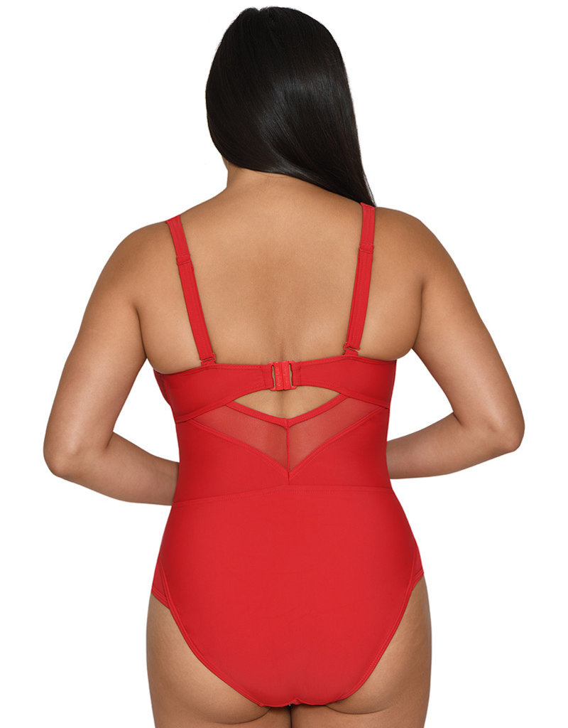 Curvy Kate Sheer Class Plunge Swimsuit