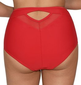Curvy Kate Sheer Class HIgh Waist Bikini Brief