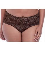 Goddess Goddess - Kayla Brief GD6168 - Dark Leopard - XL