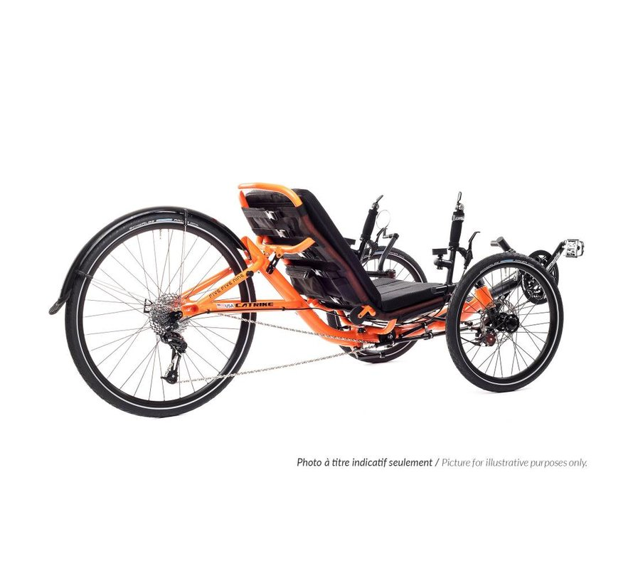 Expedition 2021 - recumbent bike