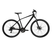 NORCO XFR 4 2019